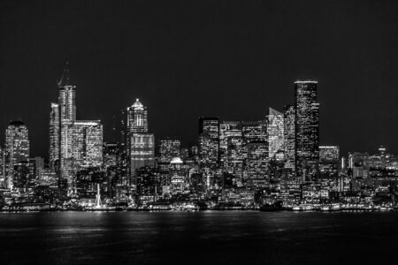 A view of the Seattle syline night lights.