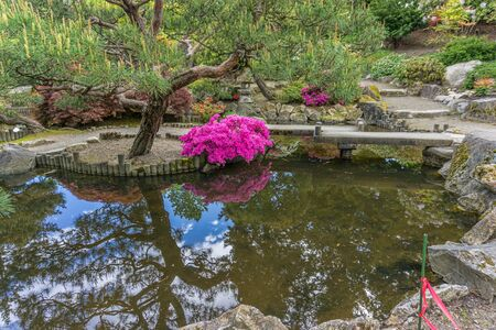 Flowers and tres are reflected in a pond at a Japanese garden in Seatac, Washington.