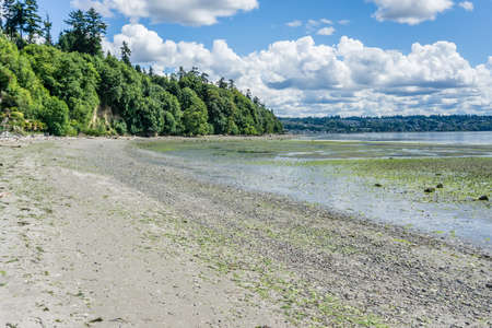 The tide is out at Saltwater State Park in Des Moines, Washington. 스톡 콘텐츠