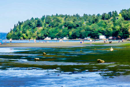An illustration of people enjoying the seashore at Dash Point State Park in Washington State.