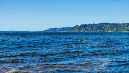 Water and shoreline in Des Moines, Washington.