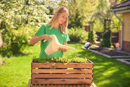 Cute happy teen girl watering flowers, in a wooden pot, from a watering can, in her home garden. 版權商用圖片