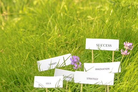 Success in the grass to gether with target, strateby, innovation, idea and vision  Stock Photo