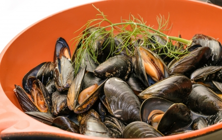 Detail of mussel in pan isolated on white backgound  Home made