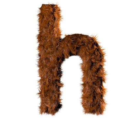 fur coat: 3d render of a hairy h Stock Photo