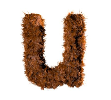 vocabulary: 3d render of a hairy u