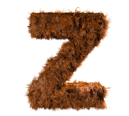 vocabulary: 3d render of a hairy z Stock Photo