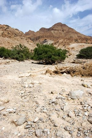 Mountains in National Park, Ein Gedi, Israel