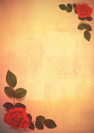 Red roses and leaves on texture background