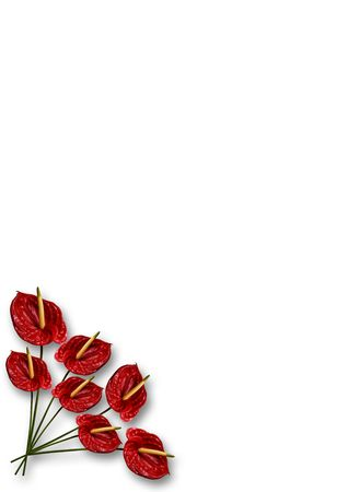 Paper with anthurium in one corner Stock Photo