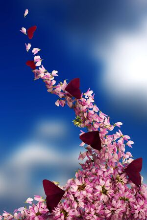 Pink flowers blown by the wind to the sky Stock Photo