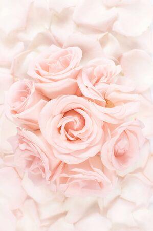 Pink roses bouquet arrangement on a pink petals