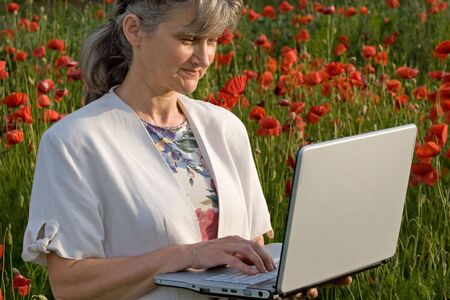 keep in touch: Woman searching on laptop in poppy field Stock Photo