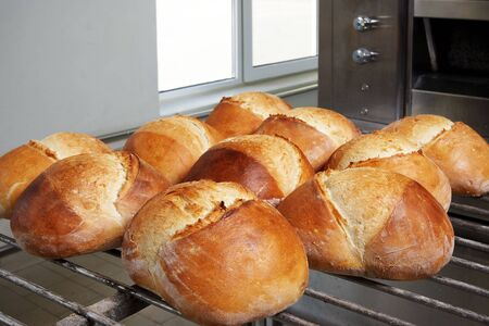 Ten fresh breads in front of the oven, on wagon Stock Photo
