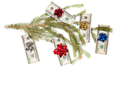 Dollars on fir tree isolated on white Stock Photo - 16604415