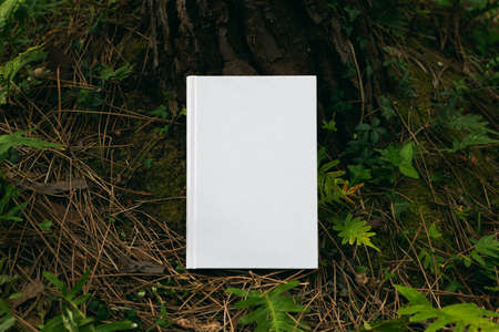 book with blank cover and empty cover perched in a forest Foto de archivo