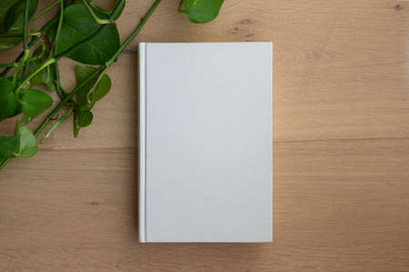 Book with blank cover and empty cover on a wooden floor seen from above