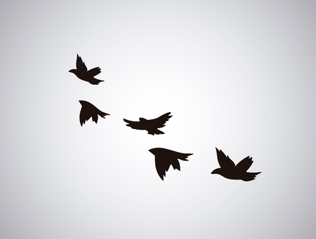 flying birds: bird silhouette