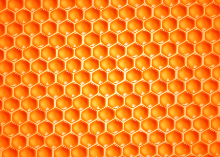Bee wax cells texture.
