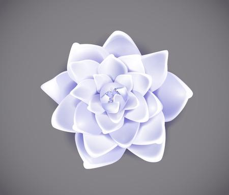 Blossoming blue flower isolated in background. Spring Rose, camellia flower. Stock Illustratie