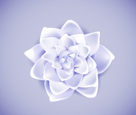 Blossoming blue flower isolated in background. Spring Rose, camellia flower. 일러스트