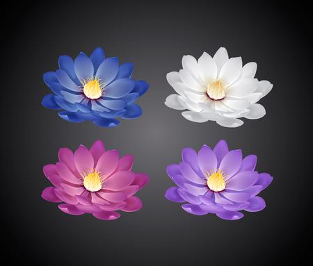 Kwitnące piękne białe, różowe, niebieskie, fioletowe kwiaty lilii wodnej lub lotosu na białym tle.