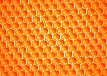 Bee wax cells texture. Stockfoto - 125276386