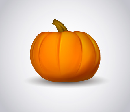Pumpkin. Vector illustration of icon isolated logo for pumpkin.  イラスト・ベクター素材