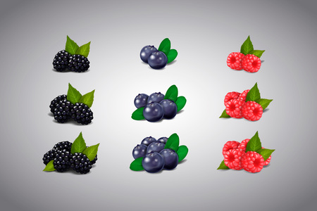 Berries collection. Raspberry, blueberry, blackberry Isolated.