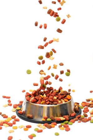 alimentos para mascotas cae en el recipiente para la alimentación Foto de archivo