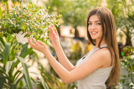 Portrait of young beauty female looking on plant pot in flowers shop. Lokiing at camera.