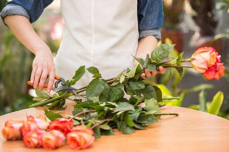 닫다. 꽃이 게에서 장미를 절단하는 젊은 여성 플로리스트.