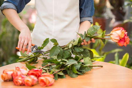 Close-up. Young female florist cutting a roses at flower shop.