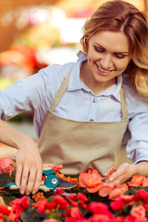 caring for: Beautiful young woman in apron is smiling while caring for plants in orangery Stock Photo