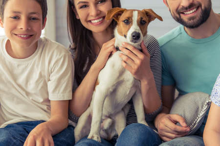 cute guy: Cropped image of beautiful young parents and their son looking at camera and smiling, sitting with their cute dog on sofa at home