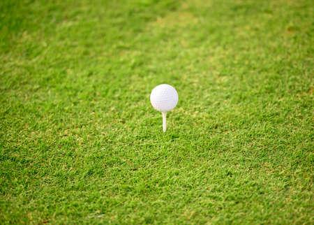 ゴルフコースの緑の芝生の上に白いゴルフボールのクローズアップ 写真素材