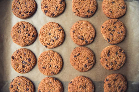 Close up top view of tasty homemade cookies with chocolate chips lying on baking paper Stockfoto
