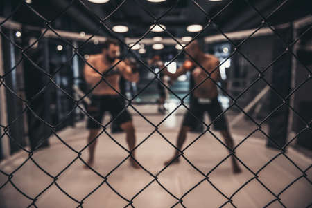 Two men in boxing gloves and shorts are fighting in cage