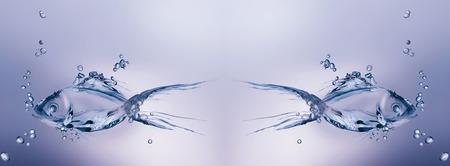 두 물고기 물에서 서로 물에서 멀리 수영을했다. 스톡 콘텐츠 - 82791559