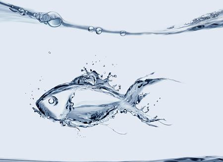 물에서 수영하는 물고기로 만든 물고기.
