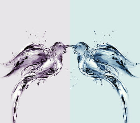 Two birds made of water kissing. Stok Fotoğraf