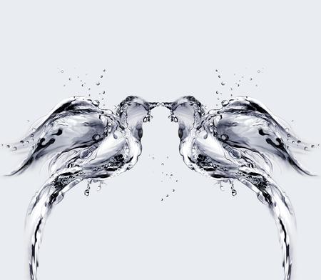 두 마리의 물로 키스를했다. 스톡 콘텐츠 - 82735093