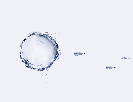 Water sperm swimming towards a water egg.