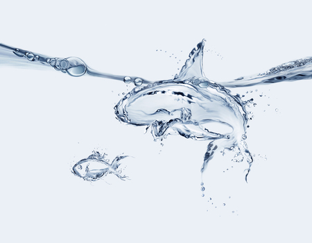 A shark made of water swimming in a menacing way, preparing to eat a water fish. Banque d'images