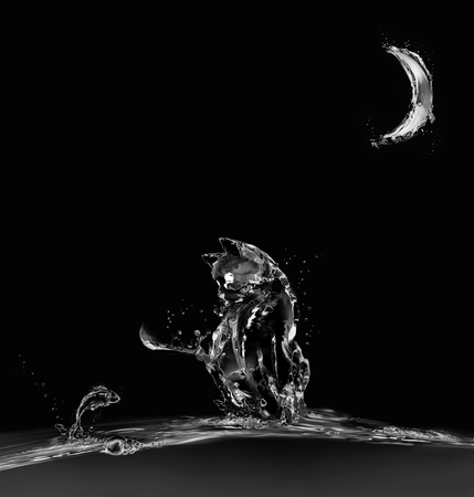 A cat made of water sitting on water in moonlight looking at a jumping fish. Stock Photo