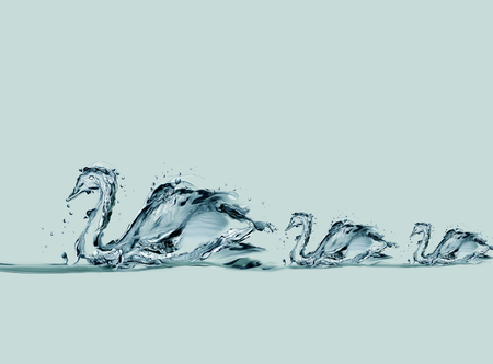 A family of swans made of water forming a queue while swimming in a lake. Archivio Fotografico