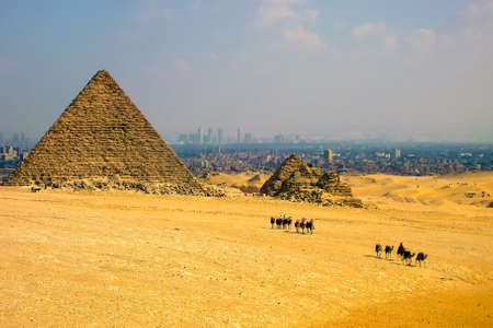 sightseeng: Caravan on the way from Pyramids, Cairo city view on the background