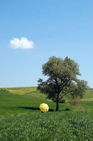 campaign: campaign and yellow umbrella