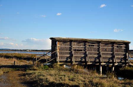 bird watching: wooden hut for bird watching