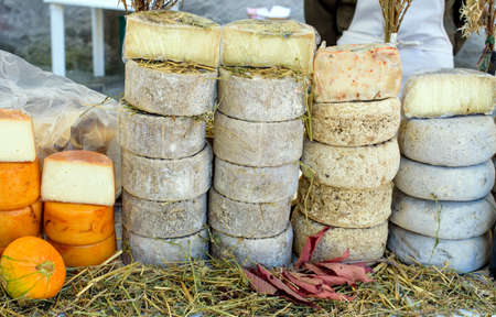 hard cheese: different types of mature hard cheese